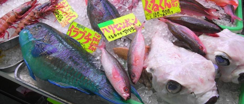 沖縄本島 市場
