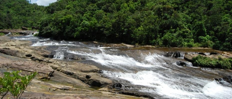 西表島カンビレーの滝